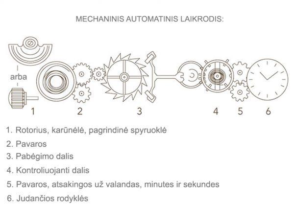 automatinis-mechaninis-laikrodis