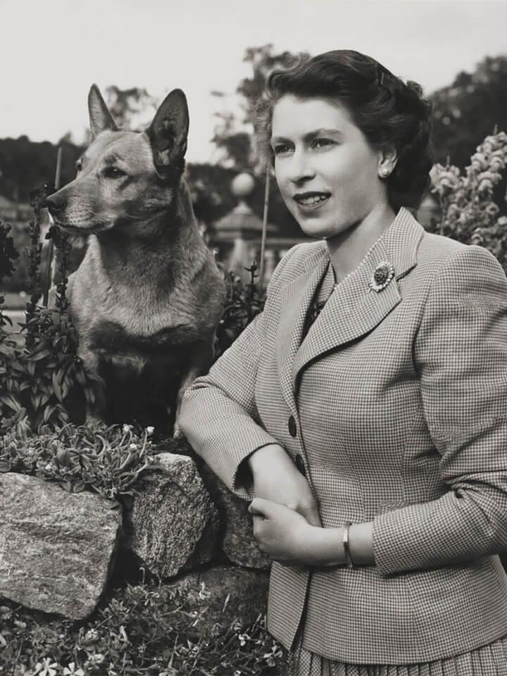 Elžbieta-II-laikrodis-šuo